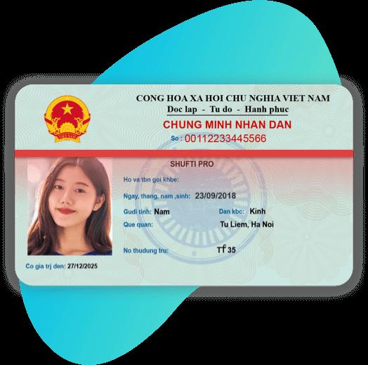 Vietnam NIC